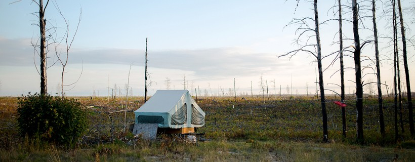 Pop up trailer located in barren field with several trees