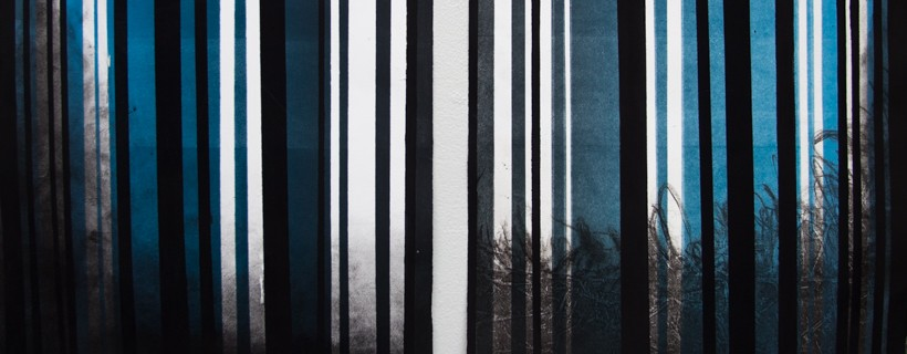 black and blue stripes over photo transfer of grasses