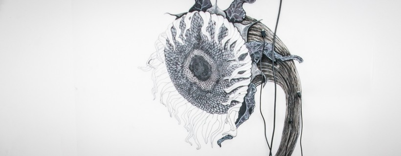 drawing of sunflower on mylar with electric cords
