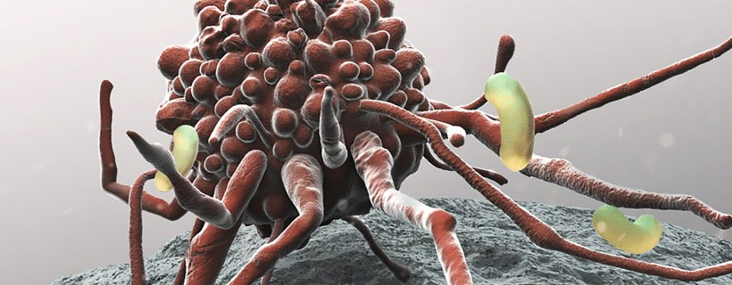 Digital illustration of bacteria looking creature with red bubbly body