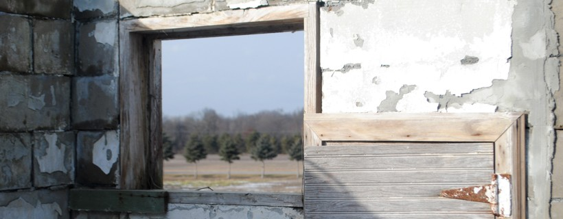 View through the a window of a cinderblock structure with neatly assorted trees on the outside