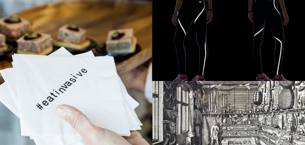 images of projects and reference images for keynote speakers #eatinvasive napkin, nike running pants, & wunderkammer drawing