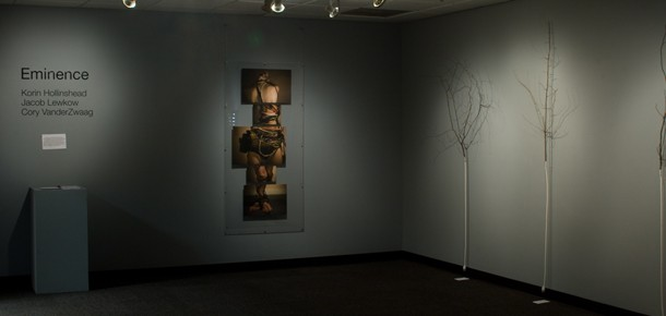 Gallery view of photograph installation and wire tree installation, Eminence, Spring 2010
