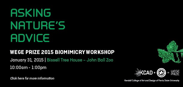 ASKING NATURE'S ADVICE. WEGE PRIZE 2015 BIOMIMICRY WORKSHOP on
